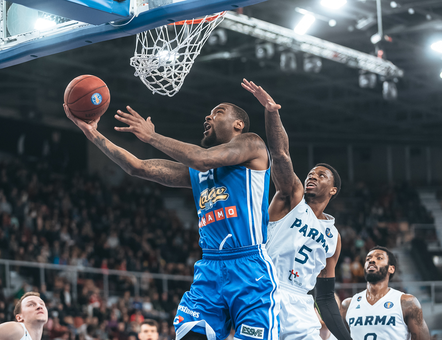 Kalev Overpowers PARMA, On Verge Of Postseason
